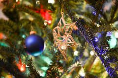 festive christmas tree with lights and decorations (DigiDreamGrafix.com) Tags: christmastree selectivefocus newyear merrychristmas christmaseve happyholidays balls objects closeup bow celebration event festive greeting happy holiday xmas happiness merry tradition traditional composition branches glossy gloss christmastime balloons baubles celebrative star bright