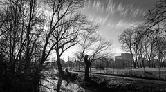 To explode into thin air (gorelin) Tags: czech czechia nymburk skies sky blackandwhite bw clouds sony sonya7 fe28f20 ilce7m2 28mm trees tree water river sun