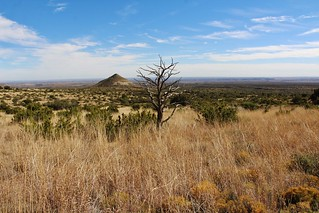 Guadalupe Mountains Natl Park