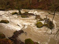 Irreler Wasserfälle bei Hochwasser (Jörg Paul Kaspari) Tags: irrel irrelerwasserfälle hochwasser dezember 2017 winter flus prüm naturpark südeifel eifel getöse