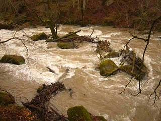Irreler Wasserfälle bei Hochwasser