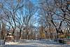 The Mall and Literary Walk (Ben-ah) Tags: centralpark nyc newyork manhattan mall literarywalk elm robertburns sirwalterscott park tree branch snow