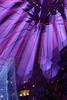The dome (35-50-70-50) (Pascal Volk) Tags: berlin mitte tiergarten berlinmitte potsdamerplatz potsdamsquare mehrfachbelichtung multipleexposure esposizionemultipla exposiciónmúltiple architecture architektur arquitectura bauwerk building gebäude komplex buildingcomplex gebäudekomplex baukomplex modernistarchitecture modernarchitecture modernearchitektur canoneos6d canonef24105mmf4lisusm 35mm 50mm 70mm nacht night noche lichter lights luz manfrotto mt055xpro3 468mgrc2 dxophotolab urban urbex