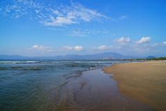 Barra de Potosí (cielopedernal) Tags: ixtapa zihuatanejo mexico méxico beach playa places sunset atardecer cielo sky animal animales animals reptil reptile iguana cangrejo arena sea sand ocean oceano mar blue crocodile cocodrilo