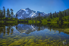 Mountain in the Mirror (RobertCross1 (off and on)) Tags: a7rii alpha cascaderange cascades emount fe1635mmf4zaoss ilce7rm2 mountbaker mountshuksan nationalforest northcascades pacificnorthwest sony wa washington bluesky forest fullframe glacier lake landscape mirrorless mountain nature pond reflection snow trees water