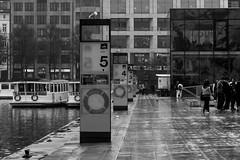 Learning to count (Özgür Gürgey) Tags: 2014 50mm alster bw d7100 hamburg jungfernstieg nikon birds lines lineup numbers people ship street