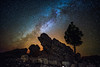 Milky Way in La Palma (free3yourmind) Tags: milky way lapalma canary islands spain rocks tree colorful night sky stars