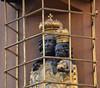 PRAGUE - STARE MESTO (3081) (eso2) Tags: prague staremesto oldtown