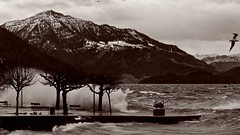 Wintersturm Burglind (Eleanor) (K M V) Tags: burglind eleanor storm wintersturm zugersee wellen waves lakeofzug rigi queenofthemountains königinderberge 169 bw bn dramatic drama orkan