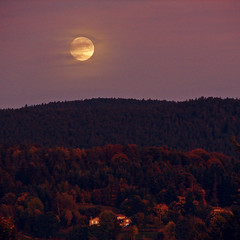 F u l l M o o n (Ƈєℓıα Ɠгαρɦץ'ѕ) Tags: sonydsch1 sonycybershot camera capture shot picture photo photographie nature moon fullmoon campaign forest mountains houses village trees evening eveningphoto clouds mist sky sunset fields