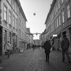 Haga (rotabaga) Tags: sverige sweden göteborg gothenburg svartvitt lomo lomography lubitel166 tmax400 blackandwhite bw bwfp twinlens