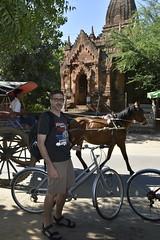 _DSC1510 (lnewman333) Tags: bagan myanmar burma sea southeastasia asia nyaungu bike bicycle ancient temple buddhist buddhism horse