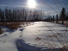 Drifting ....... (Mr. Happy Face - Peace :)) Tags: snow art2018 albertabound scenery sky flickrfriends flickrfriday fencefriday trees fence sun glow prairies yyc snowfence