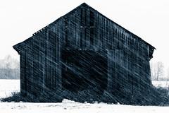 Barn Style (trm42) Tags: finnishwinter winter finland rural southernbothnia suomi snow lumi countryside pohjanmaa barn lumisade maaseutu eteläpohjanmaa talvisuomi stylized ilmajoki blackandwhite lato snowing
