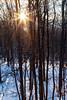 Dawn of 2018: Snowy Mountain Forest Sunrise (aparlette) Tags: sun westvirginia sunrise winter forest landscape tree appalachianmountains unitedstates color diffractionspikes snow appalachians dawn mountain starburst newcreek us