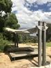 australian national botanic garden-10 (billdoyle[mobile]) Tags: australiannationalbotanicgarden act garden botanicgarden australia australiancapitalterritory anbg canberra australian billdoyle canberratripdec17jan18