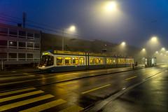 Today's best music - in the fog (jaeschol) Tags: europa heuried kantonzürich kontinent kreis3 morgen morning schweiz stadtzürich suisse switzerland wiedikon zeit