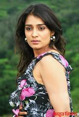 Kannada Times_Nikita Thukral_036