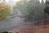 Rain, Hail and Shine (l plater) Tags: rainhailandshine sydney