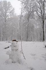 Winter Wonderland (Kitty Terwolbeck) Tags: netherlands veluwe veluwezoom nationalpark nationaalpark sneeuw snow winter woods forest trees hiking wandeltocht wandeling wandelen walking cold snowy landscape nature snowman sneeuwpop