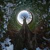 Linden tree (DankSpangle) Tags: panorama nodalninja canon1dsmarkiii