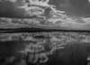 P1011764.jpg (Michael Bartosek) Tags: everglades 2017 michaelbartosekphotography epl3 olympus florida