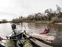Ascend H12 002 (RRcoleJR Photography) Tags: armandbayou astraldesigns beautiful brown em1 horsepenbayou houston kayak mz300mmf40ispro omd olympus ronnyfisher texas usa water zd150mmf20 ascend ascendh12 bassproshop bipod dirty fisheye h12 lowtide marsh marshland marshy muddy paddle river swamp swampland swampy zen