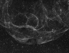 Simeis 147 (MaGeOl) Tags: nebula astrophoto astrophotography astronomy stars space sky star telescope filters dust bw monochrome black white hydrogen qhy ha simeis 147 supernova astrometrydotnet:id=nova2373448 astrometrydotnet:status=solved