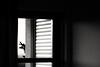 ️003/365 (threeartwishes) Tags: photochallenge2018 canon ef85mmf18 canon85mm18 blackwhite bnw 2018yip nophotoshop window monochrome