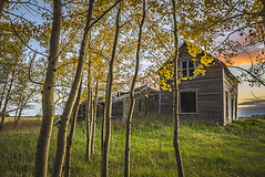 A View of Fall (A O'Brien) Tags: fall alberta autumn abandonedhouse rural sunset