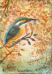 IMG_20180107_0001 (stamping_rika) Tags: postcard eisvogel ijsvogel6x6 stamping stencil distressinks stampinganonymous kingfisher