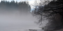 MILL LAKE IS FROZEN AND THE OUTDOOR TEMPERATURE HAS RISEN, THUS CREATING A FOGGY HAZE.  VERY MOODY. (vermillion$baby) Tags: milllake fog rain winter abbotsford december nature bc fraservalley trees tree clouds cloudflckr mist haze beautifulbc