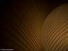 waves of light (Valeria Santacaterina) Tags: lights luce light waves onde effects effetti shadows ombre contrasto wall muro parete lampada lamp heat