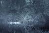 Serenity (amjs63) Tags: paisaje niebla patos agua reflejos