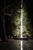 Antony Gormley Connaught Hotel Christmas Tree (2016) (aka Jon Spence) Tags: london connaughthotel mountstreet carlosplace mayfair antonygormley christmastree christmas xmas trunk light lighting art installation cedar westernredcedar londonist
