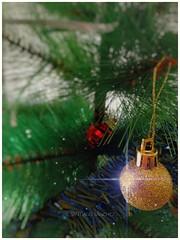 Fiestas... (Santiago Sánchez López) Tags: árbol navidad adornos casa familia cenas comidas decorar regalos reyes