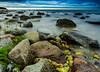 IMGP7489 (Nosetan) Tags: ostsee colur sea stone sky sun water wind wild way cloudy beach landscape