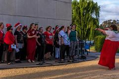 Women's a capella Canberra Harmony Chorus (Theresa Hall (teniche)) Tags: 2017 australia australia2017 canberra canberraharmonychorus carillon christmas christmascarols christmastime nikond750 sundayafternoon tamron70200 teniche theresahall womensacapellacanberraharmonychorus acapella carillonrecital carols choir women womensacapella