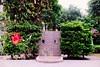 景化公園_21 (Taiwan's Riccardo) Tags: taiwan 2017 135film color negative agfavistaplus200 plustek8200i nikonem nikonlens nikkor ai fixed 35mmf2 台北市 slr 景化公園 大稻埕