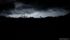 darkness (ylemort) Tags: dark nature cloudsky sky cloudscape dramaticsky silhouette storm blackcolor night landscape tree outdoors sunset scenics nopeople dusk overcast thunderstorm blackandwhite everypixel koksijde belgique belgium