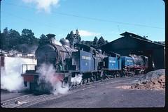 Vryheid Coronation Ltd Colliery (South Africa) - Steam locomotives Nrs. 4, 5 & 1 (HISTORICAL RAILWAY IMAGES) Tags: steam locomotive garratt vryheid africa bp beyerpeacock gorton nbl glasgow northbritishlocomotive