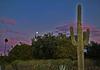 2017 Final Arizona Sunset (oybay©) Tags: arizona sunset winter sky cloud outdoor serene field landscape bright skyline tree grass sun city west colorful color tonight weather clouds summer fall silhouette colros sunshower shower backyard nikon cactus hardtosee newyearseve az