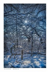 Sun seen from the woods, Eynsford, Kent. (Richard Murrin Art) Tags: sunseenfromthewoods eynsford kent snow richard murrin art photography canon 5d landscape travel images building cool