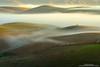 Along the Fog River (michael ryan photography) Tags: marin marincounty marinmagazine fog mist green cows hills sunrise field pasture rural michaelryanphotography