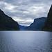 Norwegen 1998 (189) Aurlandsfjord