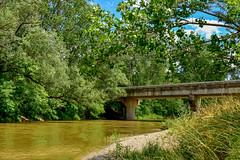 Memorial Park / Kokosing Gap Trail (thatSandygirl) Tags: ohio summer spring outdoor nature memorialpark kokosingriver bridge overpass kokosinggaptrail railstotrails railtrail water shore trees woods forest