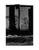 (billbostonmass) Tags: adox silvermax 100 129silvermax1100min68f fm2n 40mm ultron sl2 f2 epson v800 boston massachusetts graffiti