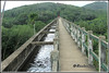 7399 - Mathoor Aqueduct (chandrasekaran a 44 lakhs views Thanks to all) Tags: mathur aqueduc kanyakumari hanging bridge structures water irrigation droughtrelief kamaraj canon powershotsx60hs