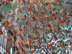 The Three Ha' Pence Tickets (Steve Taylor (Photography)) Tags: fare ticket bus receipt hanging green blue orange paper window uk gb england greatbritain unitedkingdom london londontransportmuseum 112d 1d 2180