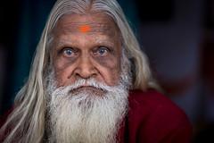 Guru (wu di 3) Tags: india blueeyes guru pushkar rajasthan man beard white